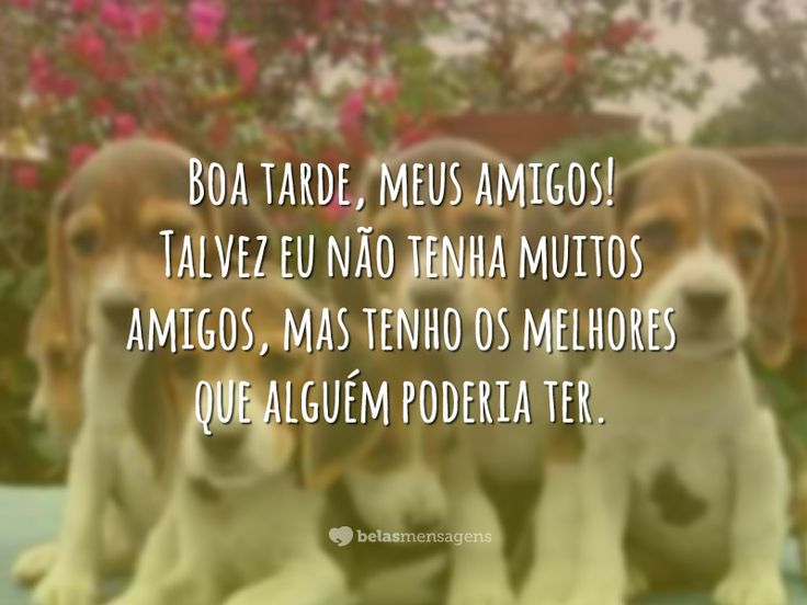 Boa Tarde Amor: 31 Best Images About Boa Tarde!!! On Pinterest