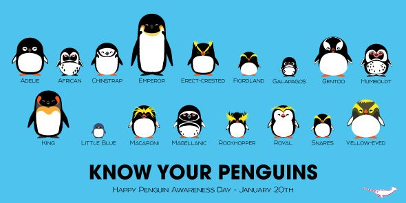 Peppermint Narwhal On Twitter Quot Know Your Penguins Happy