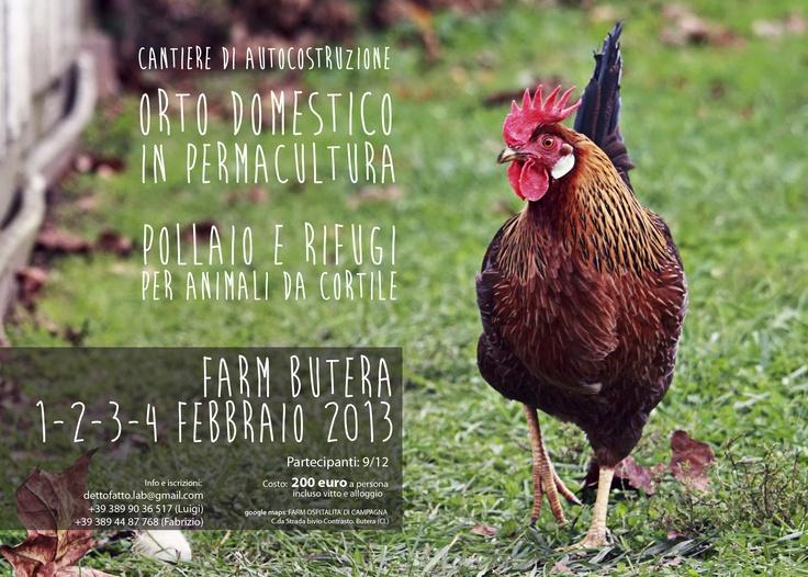 Cantiere di autocostruzione per attrezzare il grande orto domestico in permacultura e realizzare pollaio e rifugio per gli animali da cortile del Farm Camp di Butera (CL).