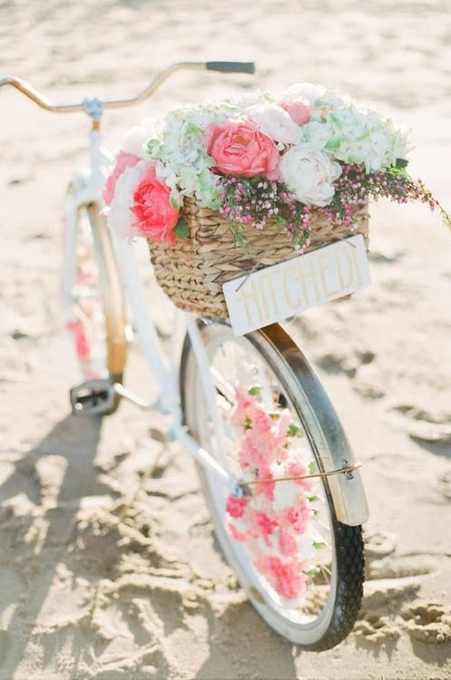 Rosa en la bicicleta