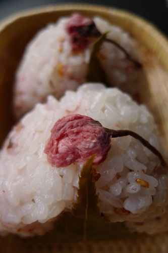Japanese Tsukemono, Salt-Pickled Sakura Cherry Blossom on Onigiri Rice Ball|桜の塩漬け