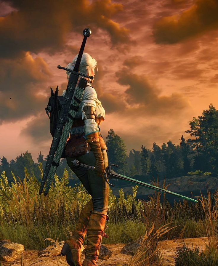 """Mi piace"": 853, commenti: 1 - Geralt of Rivia ™ (@geralt_off_rivia) su Instagram: ""😎😎 #thewitcher #witcher3 #witcher #wiedźmin3 #wiedźmin #ведьмак3 #ведьмак #geraltofrivia #ciri…"""