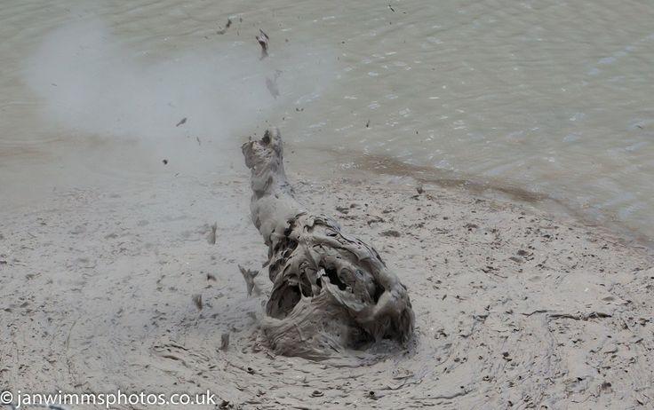 Mud pools Rotorua  - NEW ZEALAND NORTH ISLAND