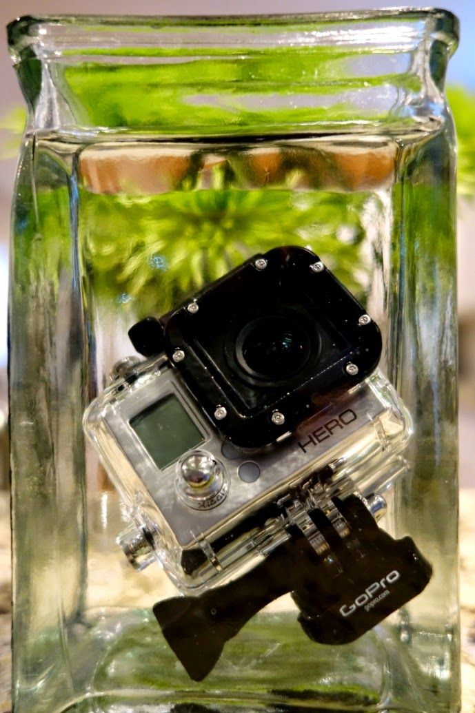 4 Tips for Using a GoPro : SCUBA & Pool