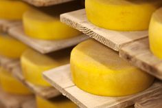 Nagyon egyszerű - Trappista sajt Házilag - Pikantéria