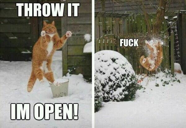 I'm open!