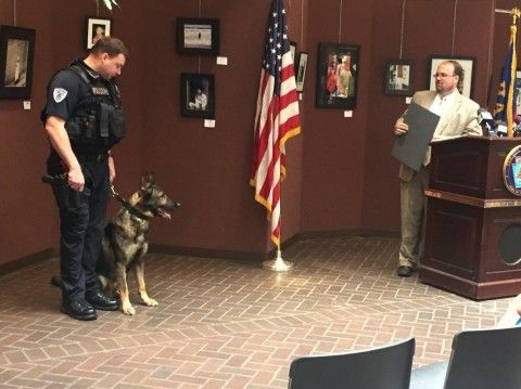 Harrisburg Canine officers Jack and Reno had served three and six years, respectively, but both were showing signs of wear. The dogs' careers were celebrated at a ceremony inside City Hall Tuesday morning.