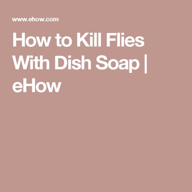 How to Kill Flies With Dish Soap | eHow