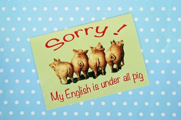 {False Friends or My English is under all Pig!} German-English Edition – Beauty Expression by Luchessa