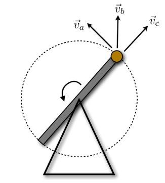 The Physics of Punkin Chunkin - Wired Science