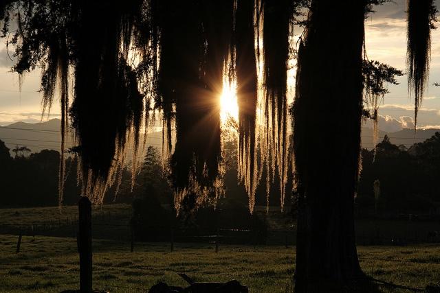 sol occidental by Alejo, en Vespa, via Flickr