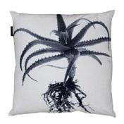 Aloe St Verde scatter cushion R699 Weylandt's