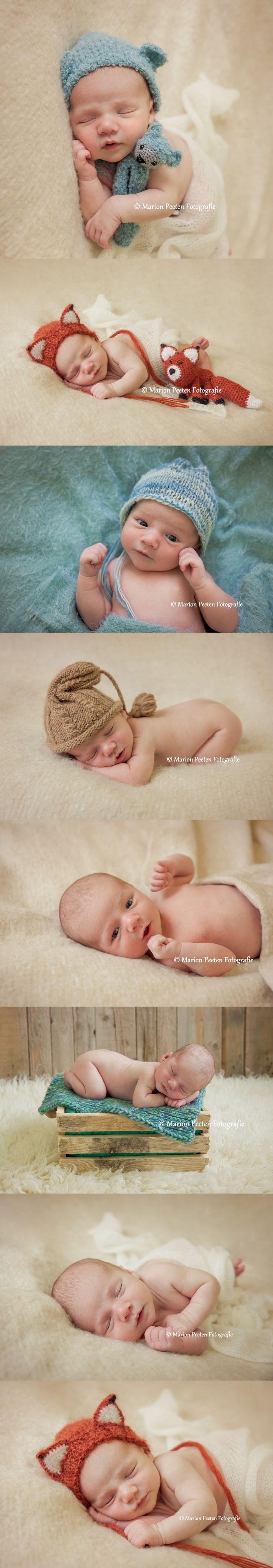 newborn fotografie,newborn photography, studio photograpy, studio fotografie,pasgeboren baby fotografie, little newborn fox, little newborn bear