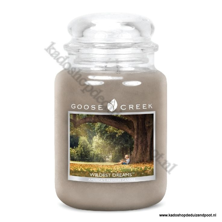 Wildest Dreams  Goose Creek Candle  Large Jar