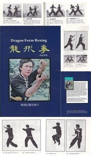 dragon fist martial arts