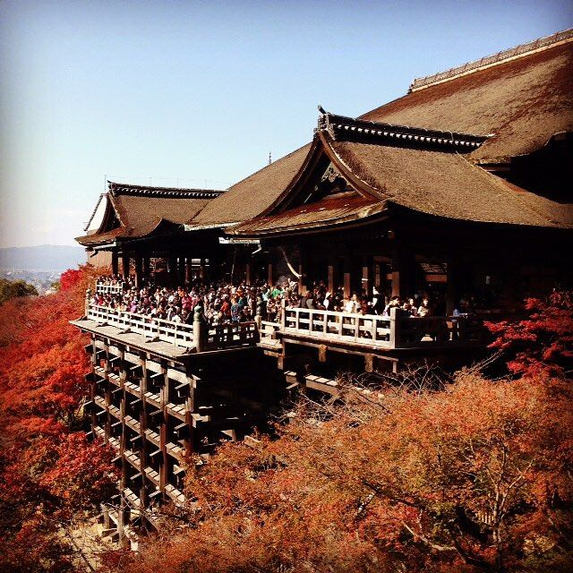 ・ 清水寺 11月下旬 ・ #清水寺 #清水の舞台 #京都 #秋 #🍁 #紅葉 #黄葉 #過去pic #kiyomizu #temple #kiyomizutemple #kyoto #japan #autumn #fall #autumnleaves #fallleaves #trip #kanato518trip