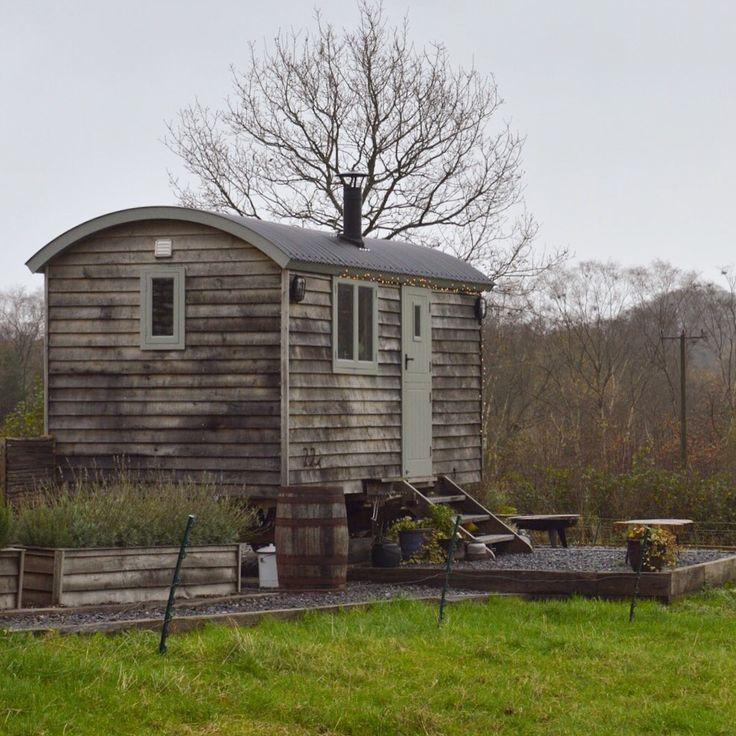 Luxury Shepherd Hut at Dimpsey Glamping*