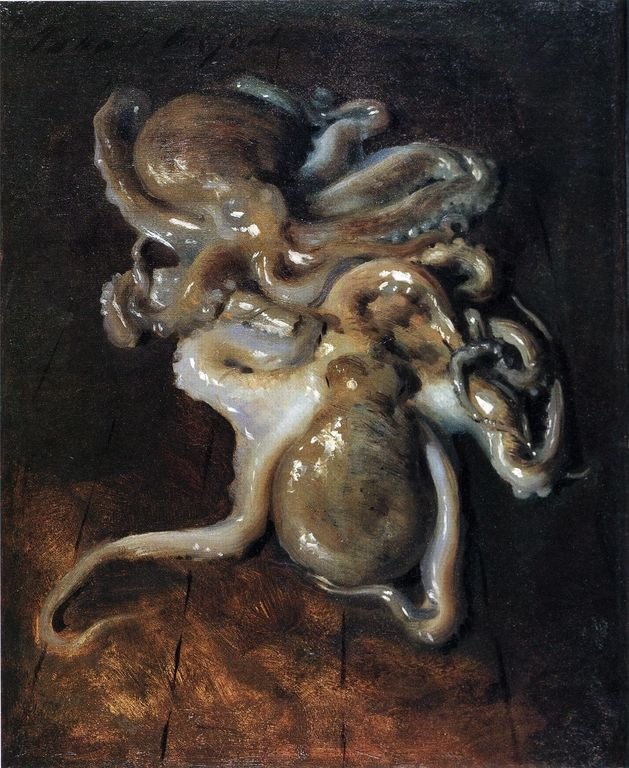 """Two Octopi"", 1885 by John Singer Sargent (American, 1856-1925), Oil on canvas, 40.6 cm x 32.1 cm, Private Collection – #art repinned by http://LinusGallery.com"