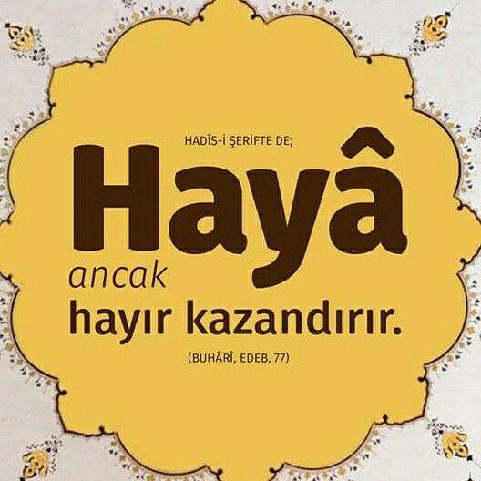 Hayâ ancak hayır kazandırır.  #efendimiz #sallallahualeyhivesellem #haya #hayır #kazan #iman #hadis #sünnet #islam #müslüman #türkiye #ilmisuffa