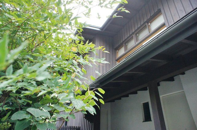 文豪in深い森、メメント・モリ。(東京都杉並区)   東京のリノベーション・デザイナーズ賃貸ならグッドルーム[goodroom]