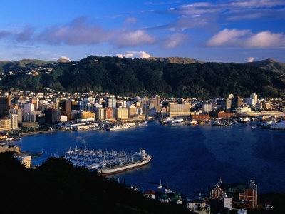 Wellington!