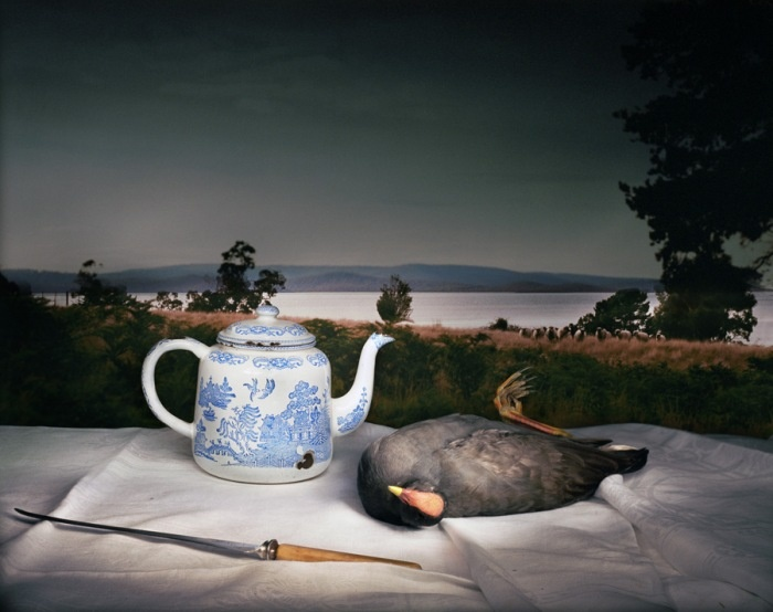 Marian Drew, Dusky Moorhen with Chinese Teapot, Archival Pigment on Hahnemule Cotton Paper, 70 x 90 cm