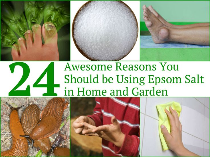Epsom salt is a type of pure mineral that comes from a compound consisting of sulfate and magnesium. Epsom salt comes with a variety of health benefits, household and garden uses and beauty uses. The skin readily absorbs both sulfate and magnesium, according to various studies, making Epsom salt...