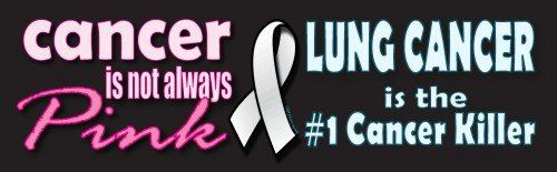 Lung cancer awareness car bumper stickers by DustyJoyShop on Etsy, $7.50