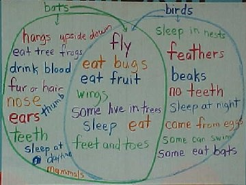 the birds compare and contrast There are a lot of ways to compare and contrast birds/ reptiles the most common way is to use the venn diagram to compare the two groups contrasts: they are both vertebrates.