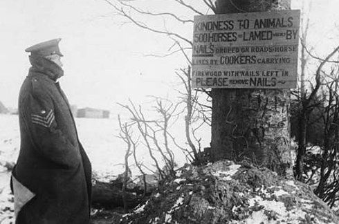 """sergeant, wrapped in his greatcoat against the cold, reading a notice nailed to a tree. It reads: """"Kindness to animals. 500 horses lamed weekly by nails dropped on roads and horse lines by cookers carrying firewood with nails left in. Please remove nails."""