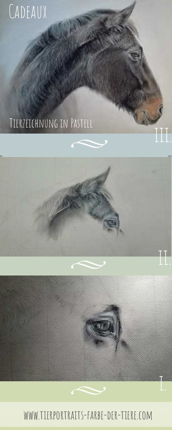"""Tierportrait in Pastell """"Cadeaux"""" Step by Step"""
