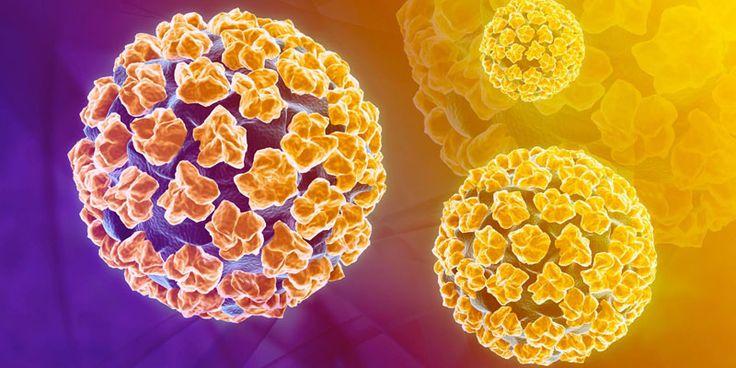 Vinovat de apariția negilor și verucilor, dar și a mai multor tipuri de cancer, infecția cu virusul HPV (Human Papiloma Virus) este o afecțiune ce…