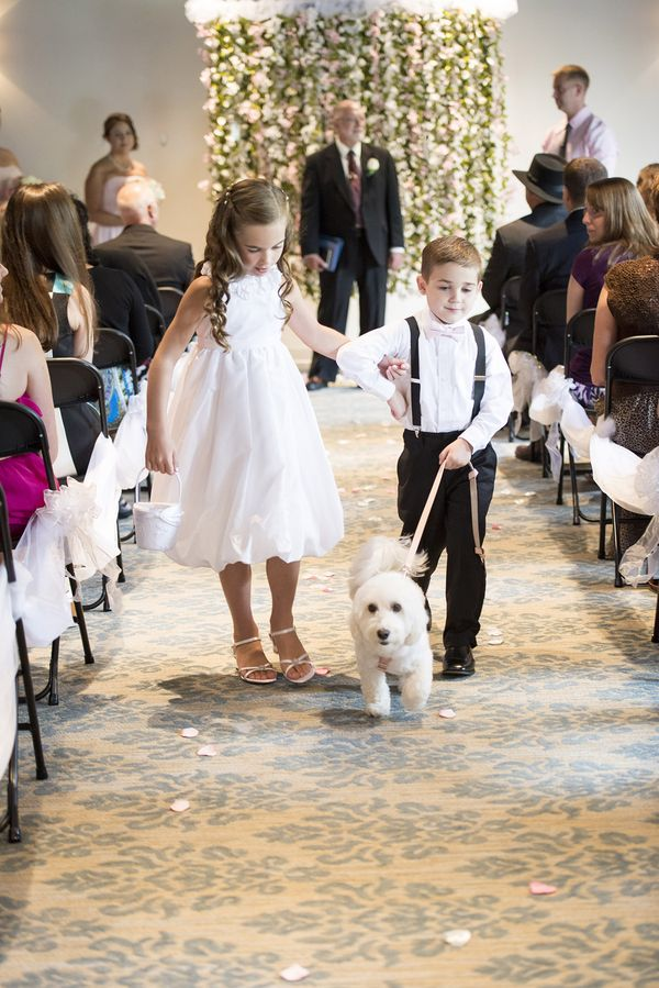 Shannon and Shelby's Southern Afternoon Wedding   Love Inc. Mag   photo by HMK Photography #dogsinweddings
