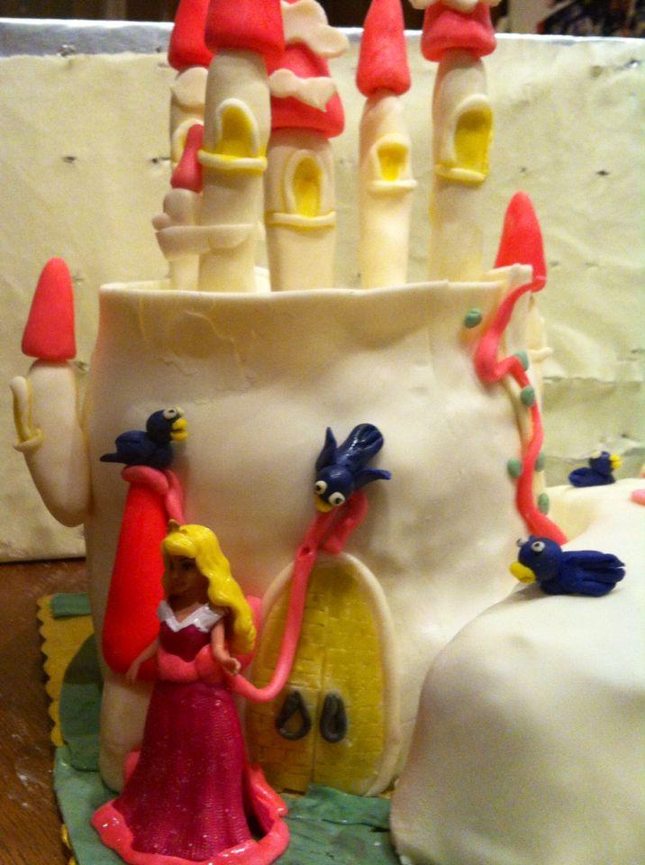 A close up to princess cake