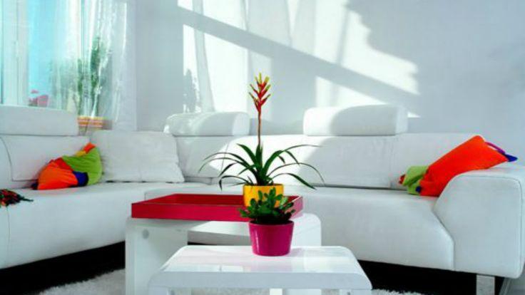 Ideas para decorar una sala economica y pequeña