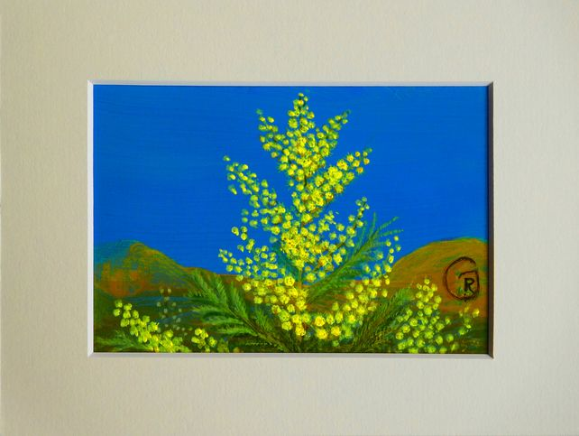 A Twig of Mimosa From My Neighbours Garden - a miniature artwork £35.00
