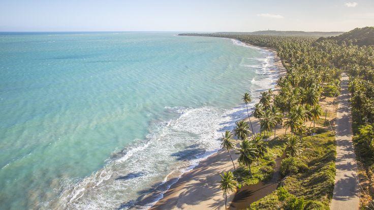 Uma tarde na praia de Japaratinga #Praia #Japaratinga #Alagoas #Natureza #Férias #Nordeste