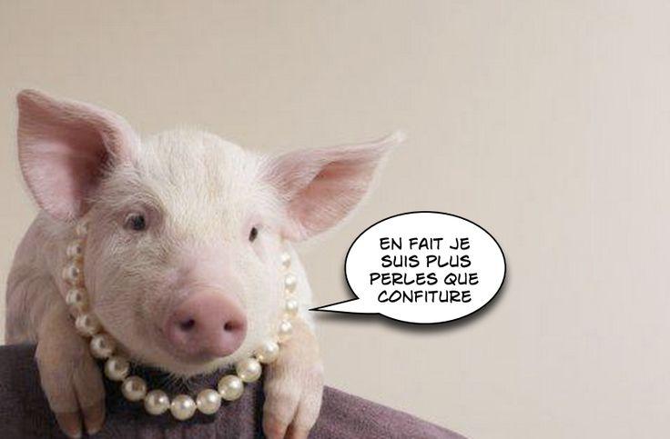Donner de la confiture à des cochons