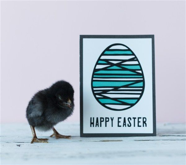 Easter Egg Card. Make It Now with the Cricut Explore machine in Cricut Design Space.