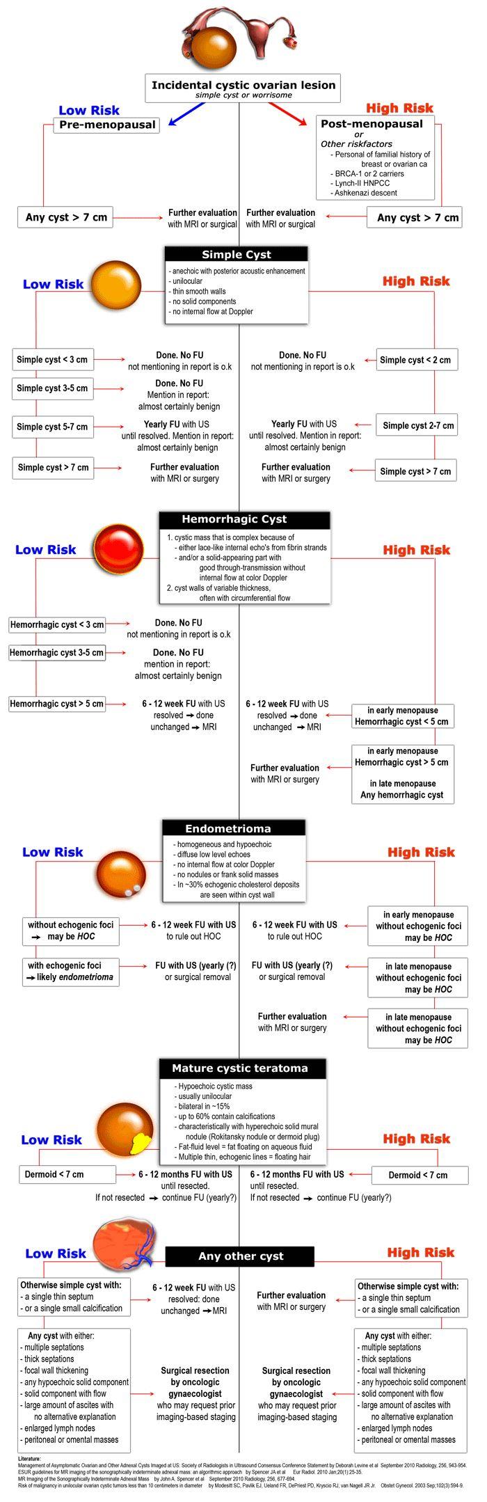 Gastritis, Magenschleimhautentzündung: Ursachen, Symptome, Behandlung und Prävention