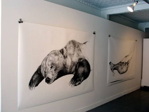 drawing installations contemporary art - Google Search