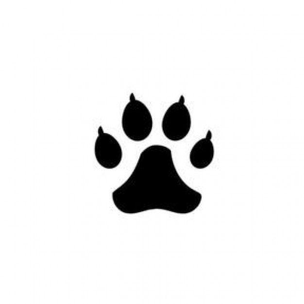 Imagenes de huellas de gatos - Imagui