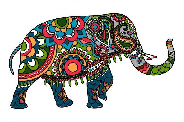 Doodle De Color Elefante Indio Elefantes Pintados Elefante Indio Imagen Elefante