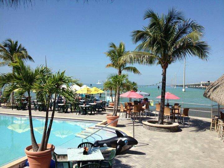 College Food Places To Eat Boca Raton