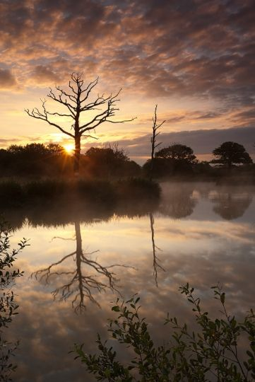 Daybreak ~ Morchard Road, Devon (Adam Burton Photography)
