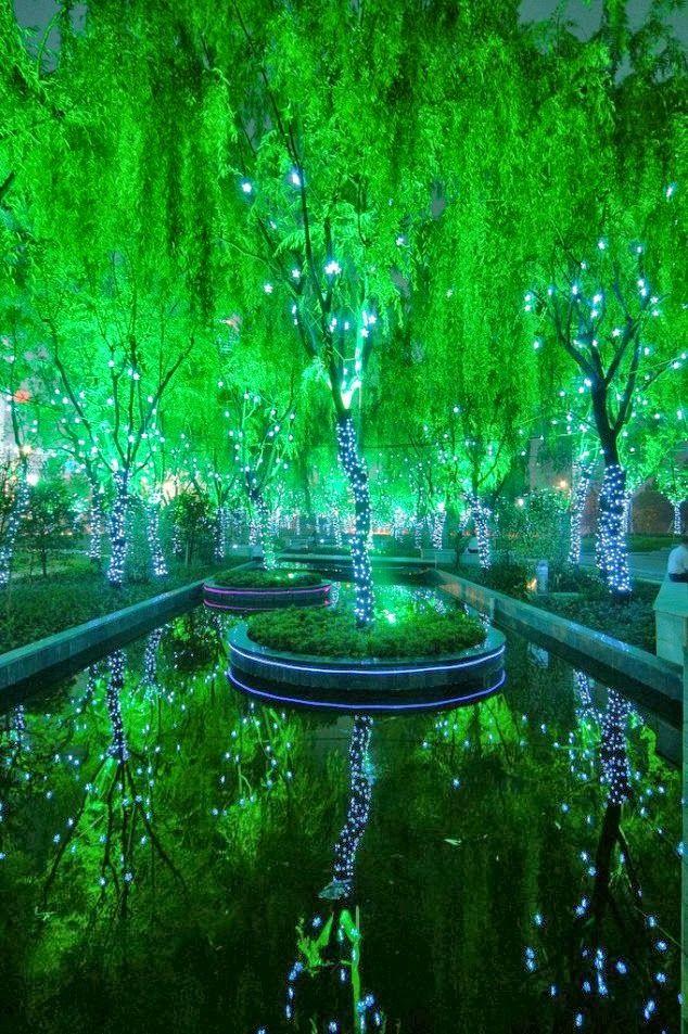 Amazing Magic Forest, Shanghai, China