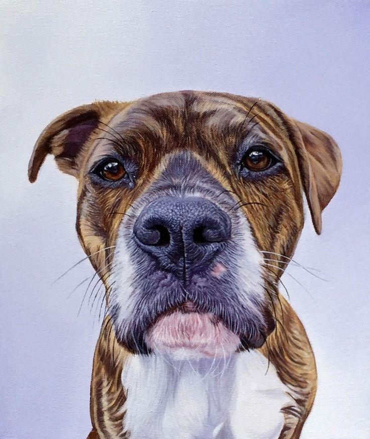 369 best pet portrait images on Pinterest | Cat art, Cat drawing and ...