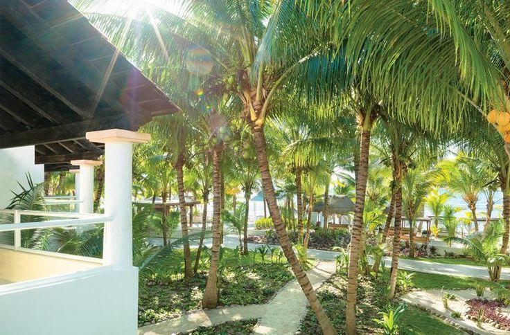 Liefhebbers van luxe en gastronomie vinden hun plek in Sensimar Seaside Suites & Spa. Verwennen is hier uitgevonden!. Dit gloednieuwe hotel is nu al befaamd om haar Gourmet Inclusive formule, waarbij het eten van hoog niveau is en bovendien All Inclusive. Geen kinderen of over-the-top animatieprogramma, wél een lazy river door het luxe resort en heerlijke loungebedden om in weg te zakken. Laat je verwennen in de luxueuze Spa of droom weg in de whirlpool in je suite.