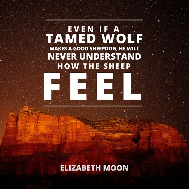 The wolf will never understand how the sheep feel. - Elizabeth Moon