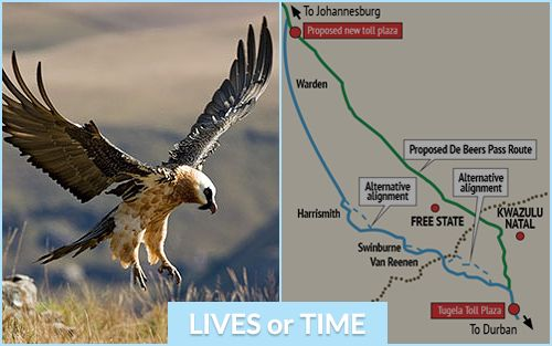 Saving time or saving animal lives - which would you prefer? Repin if you'd rather save lives...heart if saving time is a priority. Click to learn more. #N3DeBeersPass #Drakensberg #OaklandsCountryManor